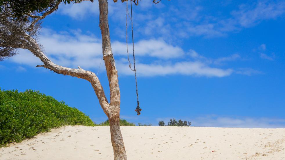 Seal Rocks – plaża, plaża, najplaża