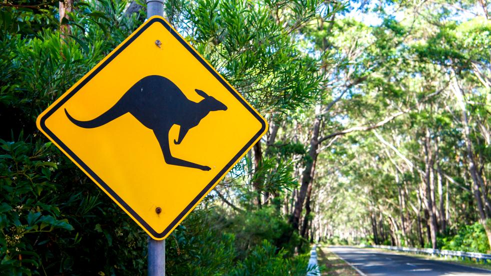 Australia: miesięczny roadtrip