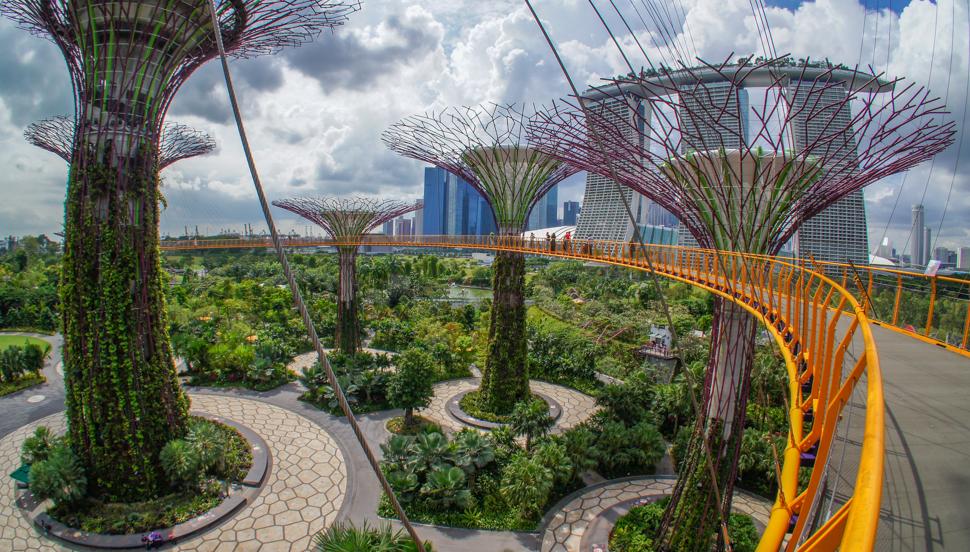 Gardens by the Bay – ogrody nie z tego świata
