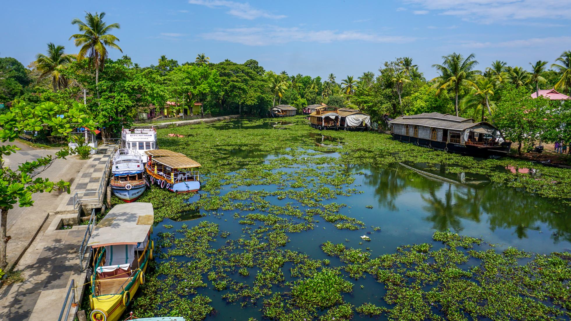 5 powodów, żeby zakochać się w Kerali