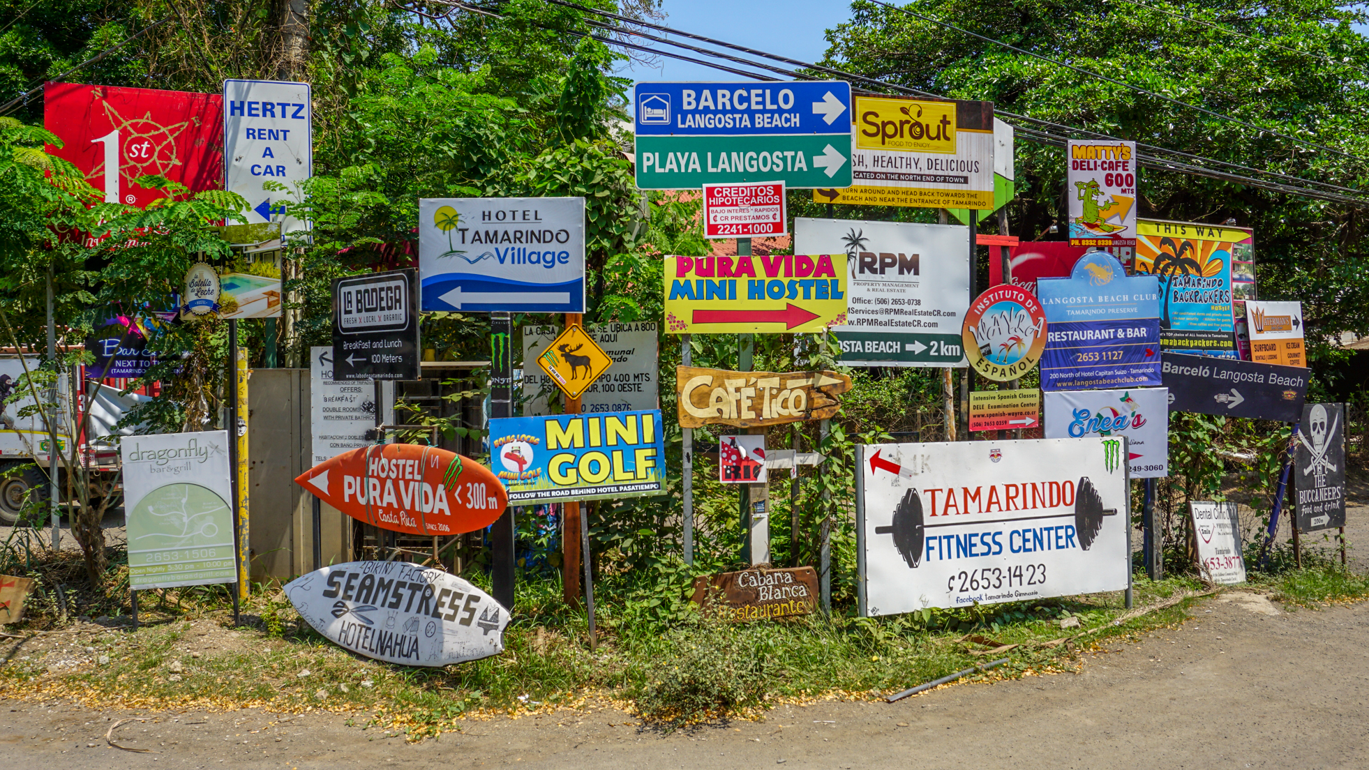 Co robić w Tamarindo?