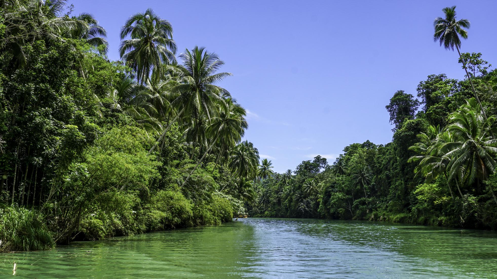 9 rzeczy, które musisz zrobić na wyspie Bohol