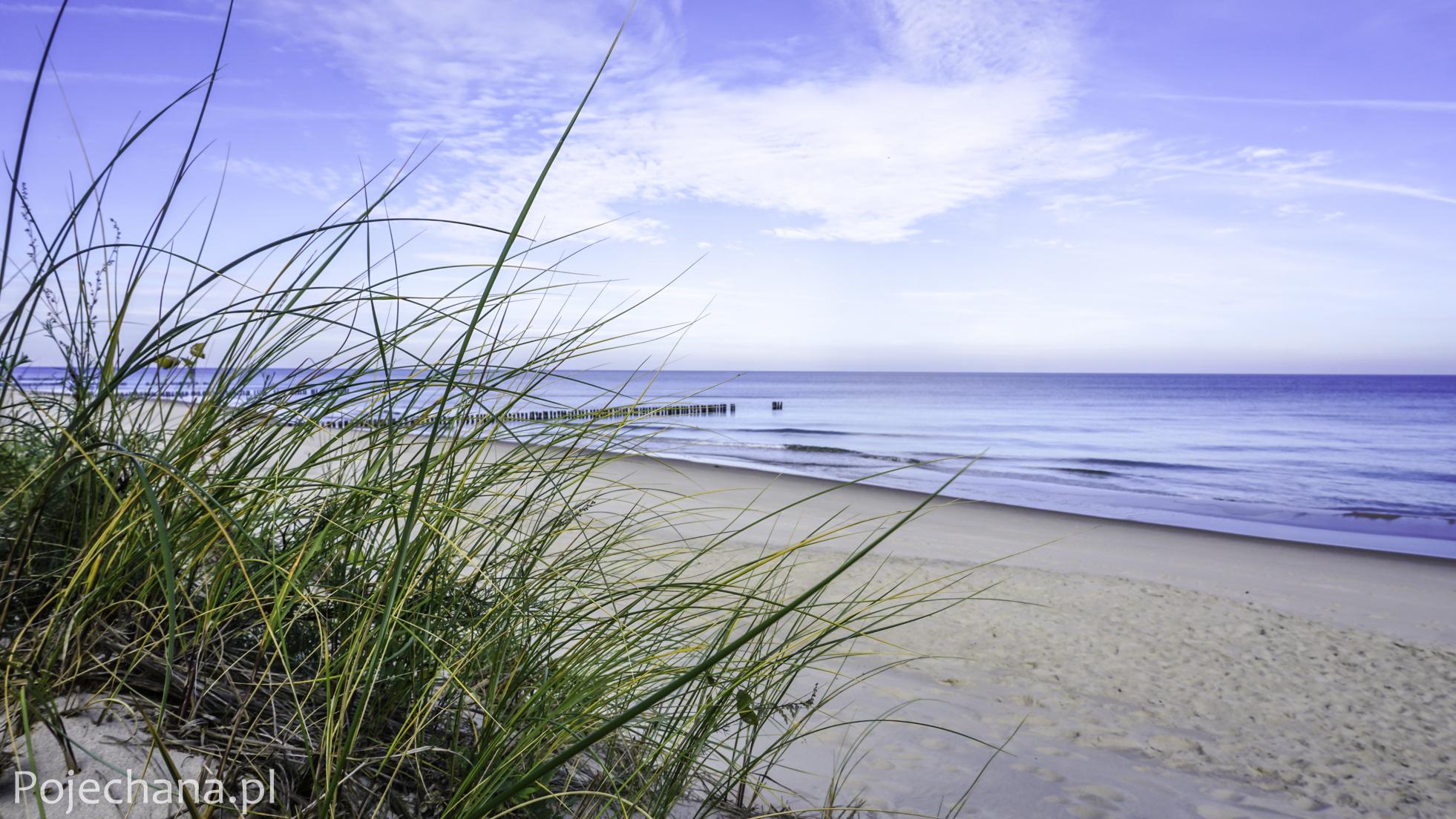 szybkie randki na północnych plażach randki online znajdź kogoś