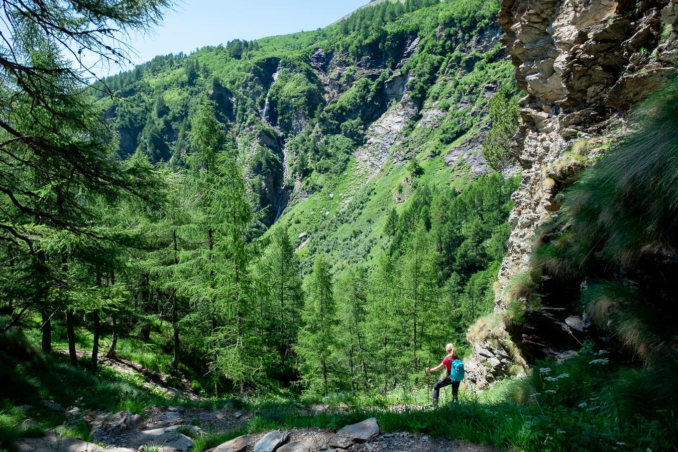 młoda kobieta na trekkingu wśród zieleni
