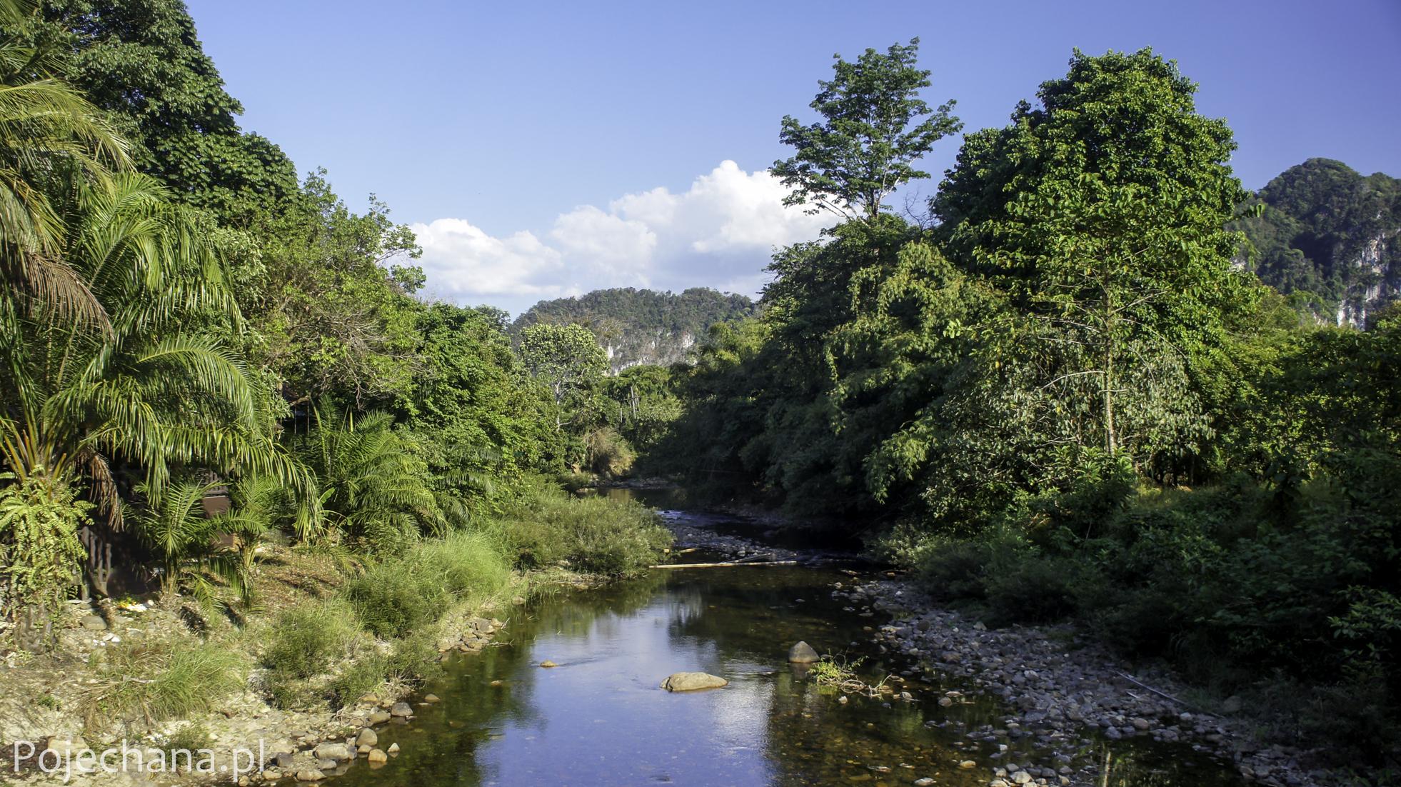 rzeka w Khao Sok